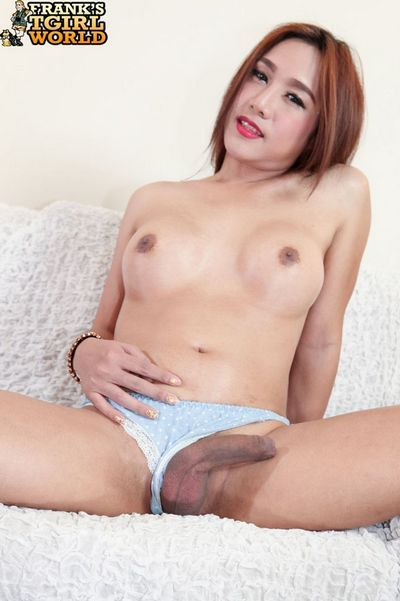 Franks Tgirl World torrent